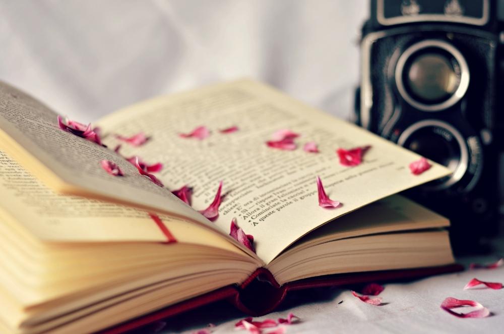 book-incredible-hd-wallpaper-142944404726
